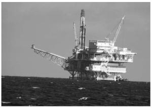 oil01
