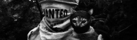 cropped-autonome-katzenantifa-attacke